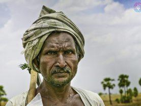 agri reforms