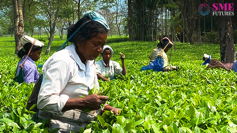 Your cup of tea goes under makeover, but industry is grappling with challenges